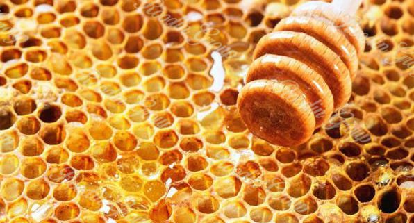 honey price