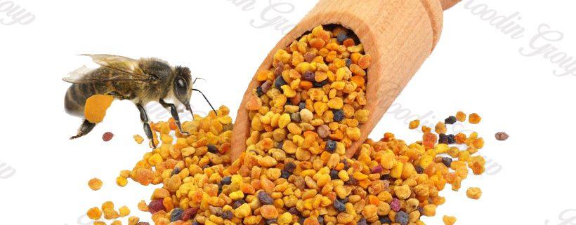 Buy Organic Bee Pollen