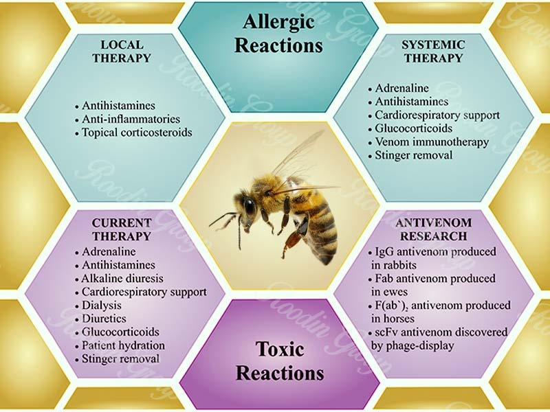 What Is Honey Bee Venom Used for