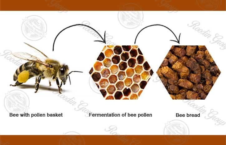 bee bread pollen production