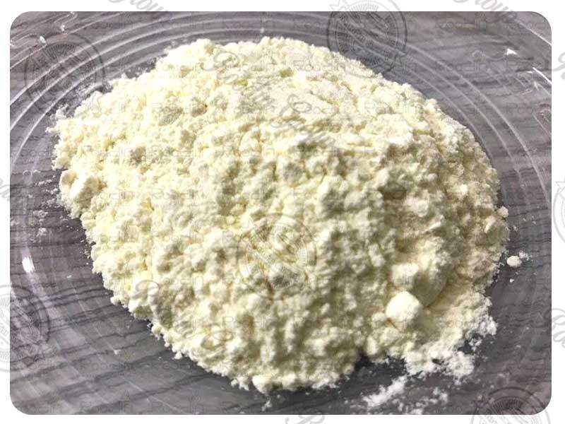 Royal Jelly Powder Bulk Wholesale